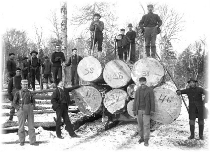 Load of logs in the Adirondacks c. 1890