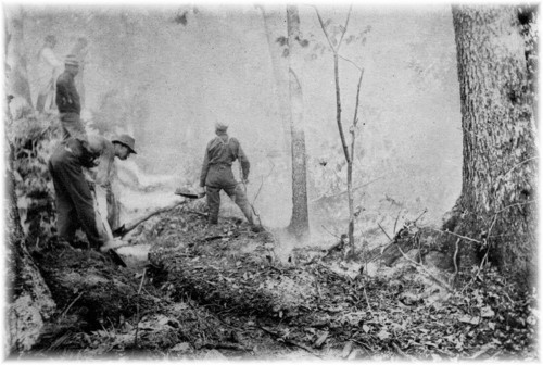 Firefighters build a hand-dug line to contain a forest fire. - c. 1889