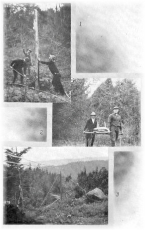 Collage of telephone line construction work by forest rangers and observers.