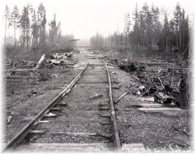 Resulting damage from the Long Lake West Fire - 1908