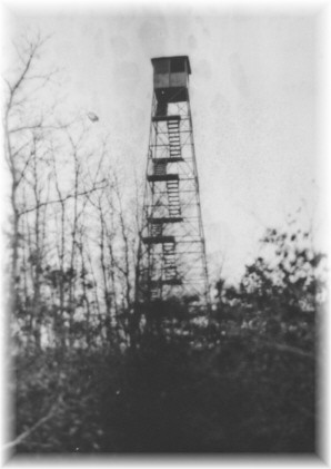 Telescope Hill Fire Tower - a NYS Archives Photo